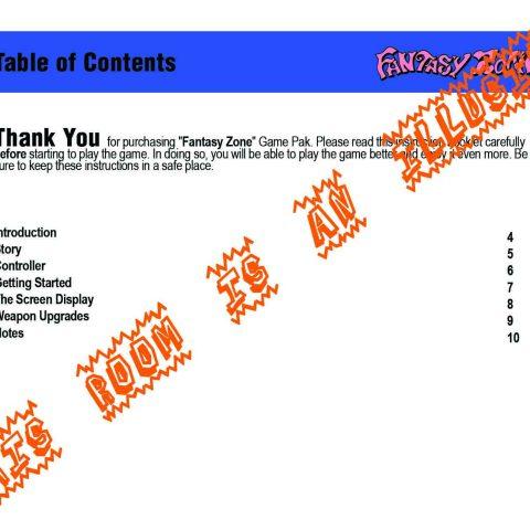 Fantasy Zone Manual Page 3
