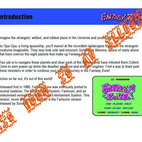 Fantasy Zone Manual Page 4